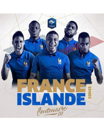 France Stunning Limited Edition 100th Anniversary Soccer Jersey 2019